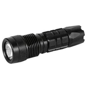 BX2 HANDHELD DIVE LIGHT